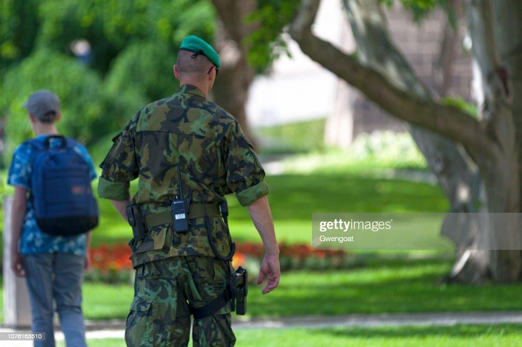 チェコの兵士 : ストックフォト