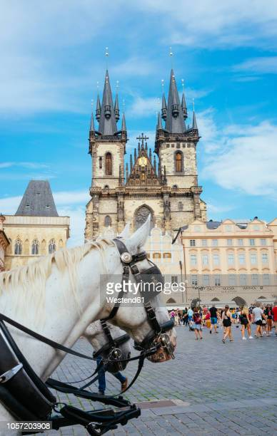 czechia, prague, horse carriage fat the old town square with church of our lady in the background - notre dame de tyn photos et images de collection