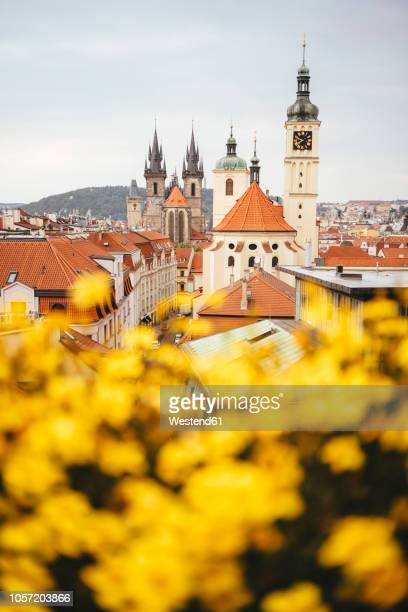 czechia, prague, view to basilica of st. james and teyn church in the background - notre dame de tyn photos et images de collection