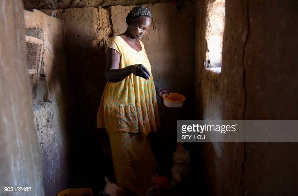 Daba Dione works in her pen in Niakhar Senegal on December 5 2017 More and more Senegalese women even in remote rural areas become pillars of a...