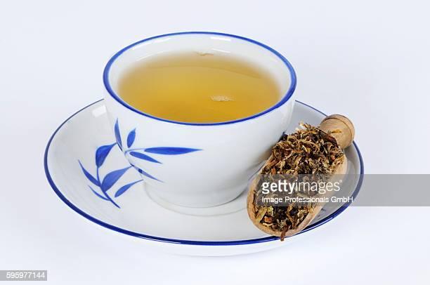 Dabdelion tea (Taraxaci Herba)