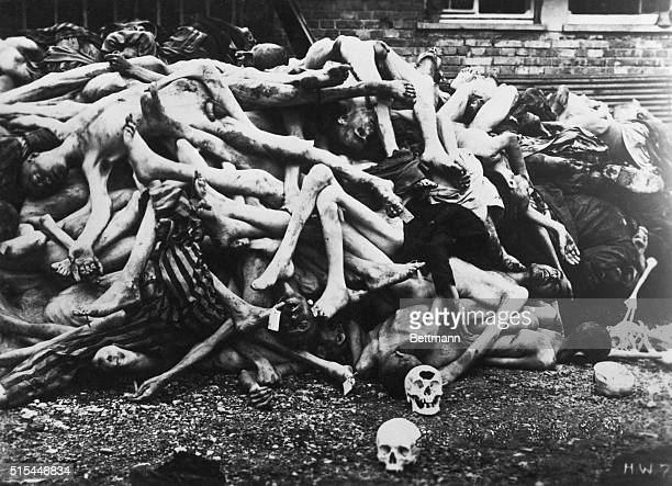 Dachau GermanyDachau Concentration Camp Close up of pile of emaciated and decomposing bodies Photograph by Heinrich Weingand ca 1940s
