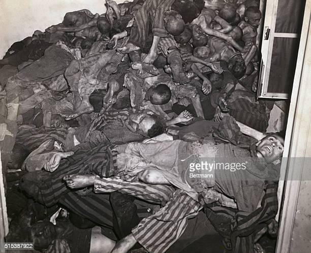 Dachau's Atrocity Camp Stark evidence of Nazi brutality is shown Piled high against the bloodstained walls of a crematory room in the infamous...