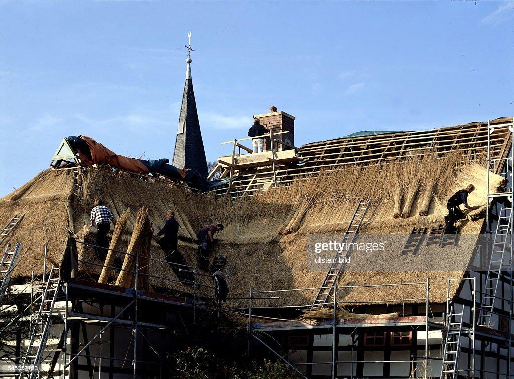 Dachdecker Decken Ein Reetdach Auf Einem Fachwerkhaus In Lindlar