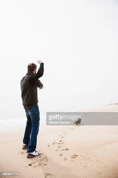 Dachshund fetching on beach, New York State, USA