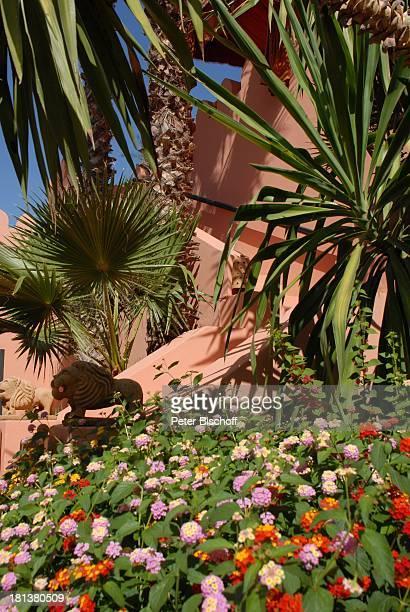 Dachterrasse der Villa von Henriette von Bohlen und Halbach Homestory Villa Bled Targui Marrakesch Marokko Nordafrika Afrika Residenz Palast Palmen...