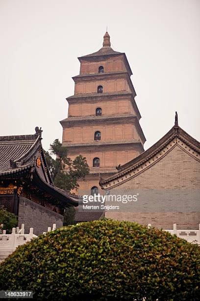 dacien temple and big wild goose pagoda. - merten snijders stockfoto's en -beelden