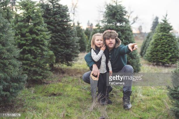 papa posiert spielerisch mit seiner kleinen tochter auf einem weihnachtsbaumhof - monat stock-fotos und bilder