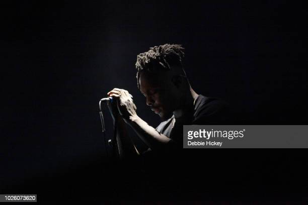 Daddy G of Massive Attack performs at Electric Picnic 2018 at Stradbally Hall Estate on September 1 2018 in Stadbally County Laois Ireland