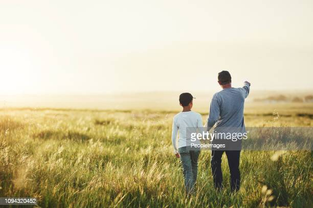 dad's taken him on loads of fun adventures - meadow stock pictures, royalty-free photos & images
