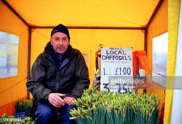 Daffodil seller with his stems for sale from his tented shelter the end of Prince of Wales Pier, on January 20, 2018 in Falmouth, Cornwall, England.