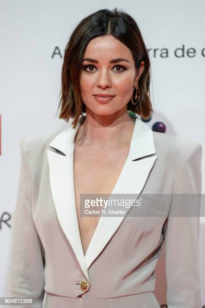 Dafne Fernandez attends the 23rd edition of Jose Maria Forque Awards at Palacio de Congresos on January 13 2018 in Zaragoza Spain