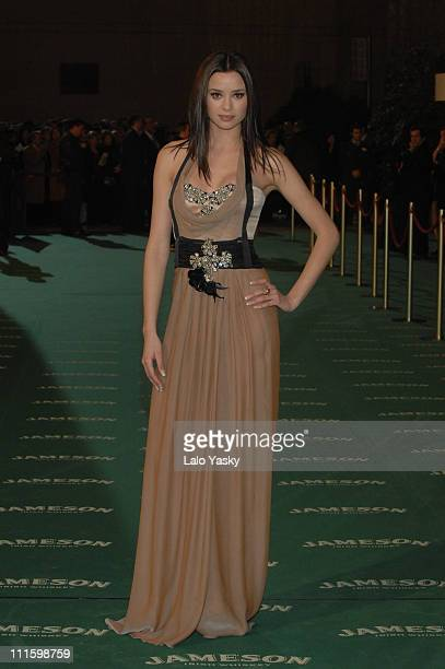 Dafne Fernandez during 2007 Goya Awards Arrivals at Palacio de Exposiciones in Madrid Spain