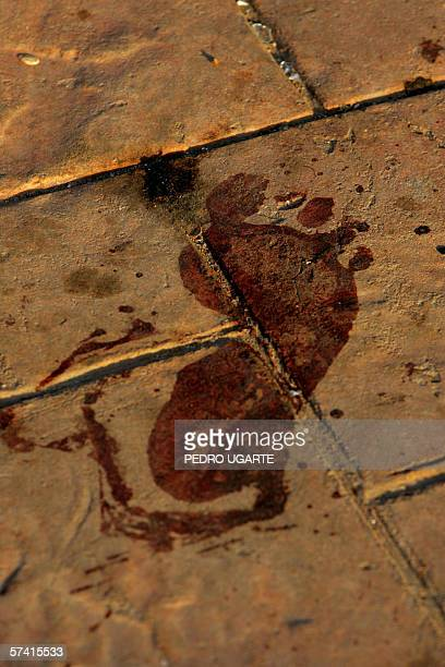 A bloodied foot print is seen near the place where one of three explosions took place in the touristic resort of Dahab 25 April 2006 Three explosions...