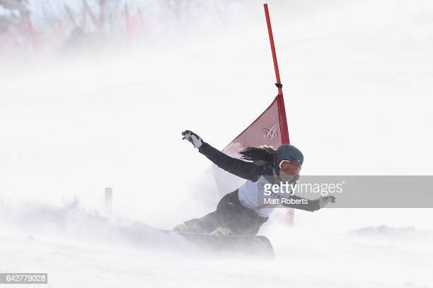 Da-hae Shin of Korea competes in Women's Giant Slalom on day two of the 2017 Sapporo Asian Winter Games at Sapporo Teine on February 19, 2017 in...