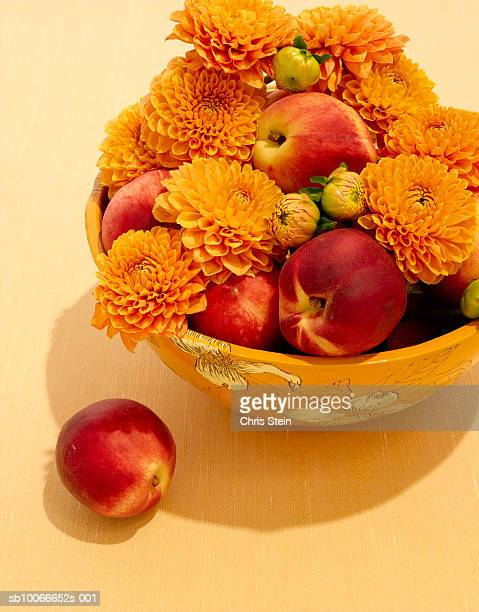 Dahlia flowers in fruit bowl with peaches