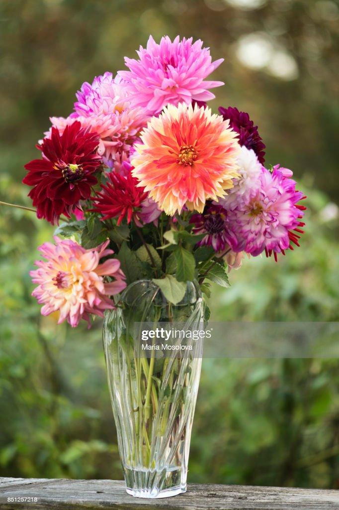 Dahlia Punkin Spice Flower Bouquet Stock Photo | Getty Images