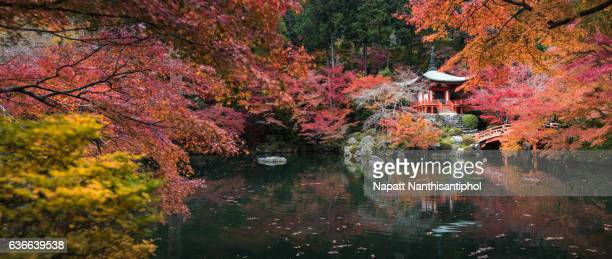 Daigoji temple panoramic view in autumn season