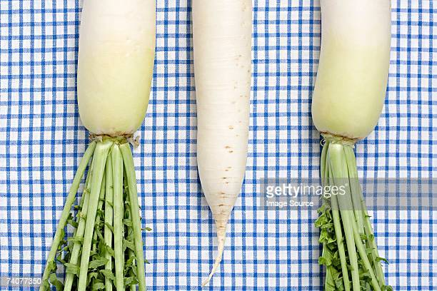 daikon - dikon radish stock photos and pictures