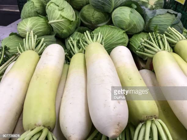 daikon radish and cabbage - dikon radish stock photos and pictures