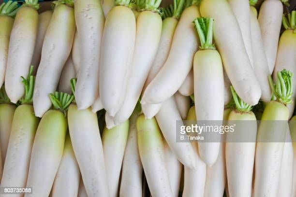 daikon radish display at vegetable shop in kyoto, japan - dikon radish stock photos and pictures
