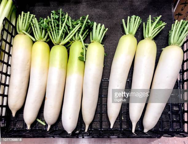 daikon radish - dikon radish stock photos and pictures
