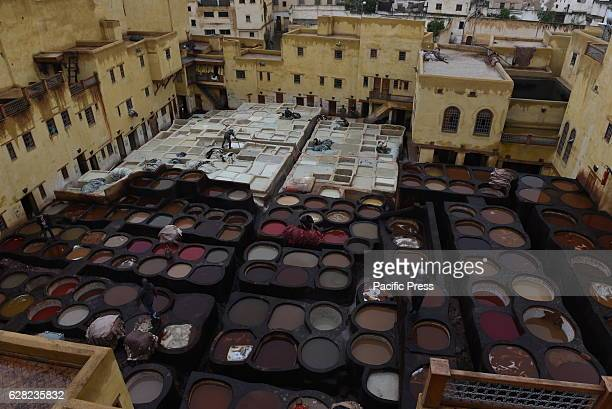 Daily life at the Chouara tannery Unesco world heritage site in the medina of Fez elBali Morocco The largest of the four ancient leather tanneries...