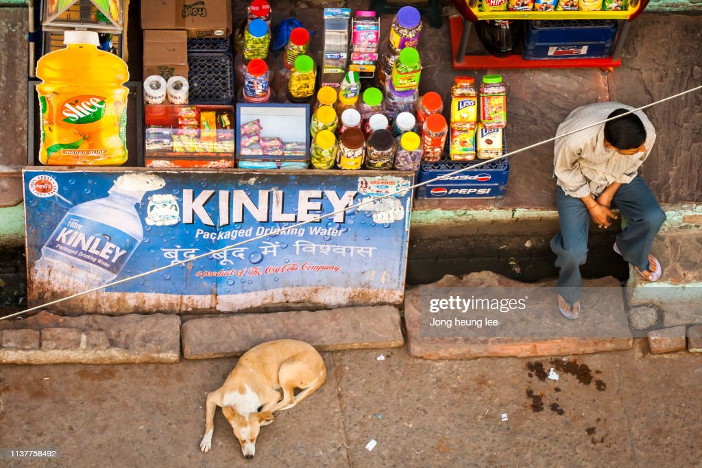 Daily life in India : Stock Photo