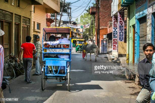 daily life in india - jong heung lee stock pictures, royalty-free photos & images