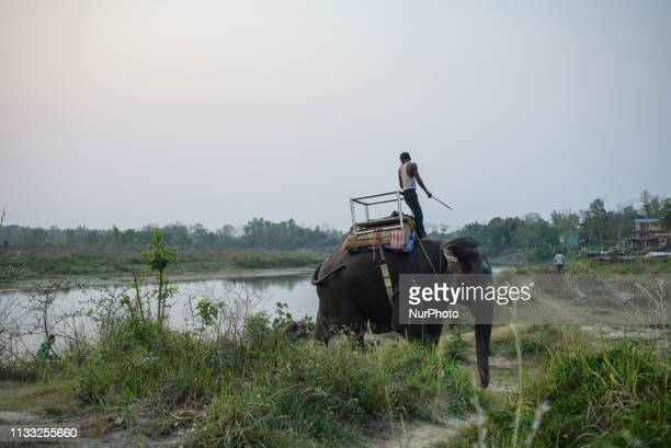Daily Life in Sauraha Chitwan National Park Nepal on March 24 2019