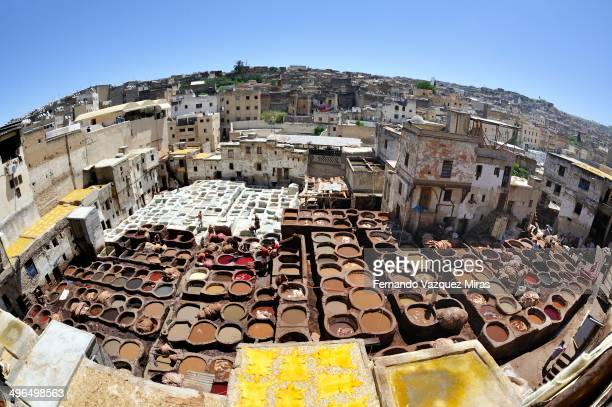 CONTENT] Daily work at the Fez leather tannery