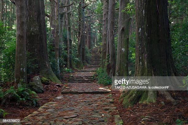 Daimonzaka slope, on the Kumano Kodo ancient pilgrimage route