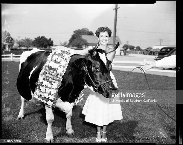 Dairy champion milk producer 31 July 1952 Pansco Hazel prize cowJoan Taylor Dairy Queen of CaliforniaGranddaughter of Pansco 3 days oldCaption slip...