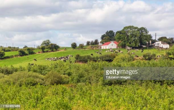 Dairy farm near Clonakilty County Cork Republic of Ireland Eire