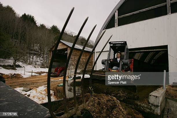 Dairy farmer Lisa Kaiman moves cow manure on her 33 acre farm March 27 2007 in Chester Vermont Like hundreds of other small Vermont dairy farmers...