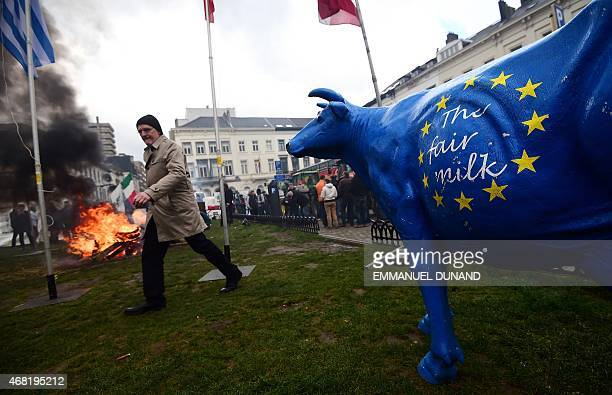 Dairy farmers stage a demonstration in front of the European Parliament to protest against the end of European milk quotas in Brussels on March 31...