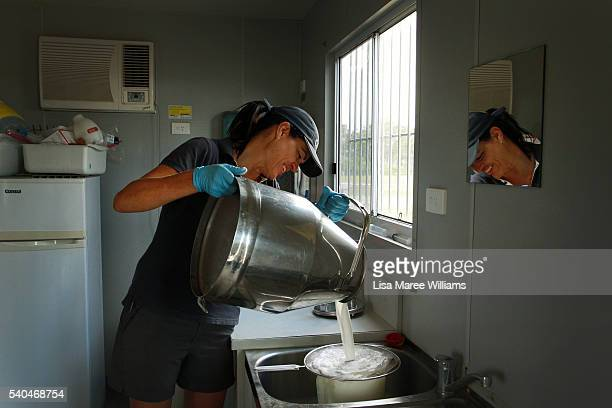 Dairy manager Sue Beattie pours fresh milk during a morning camel milking session at QCamel dairy on April 5 2016 on the Sunshine Coast Australia...