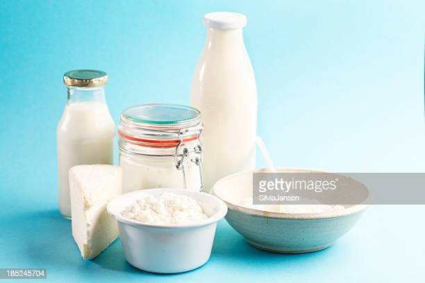 dairy products cheese yoghurt milk butter