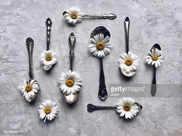 Daisies and silver spoons