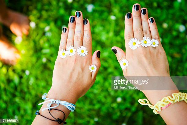 Daisies on a girls hands.