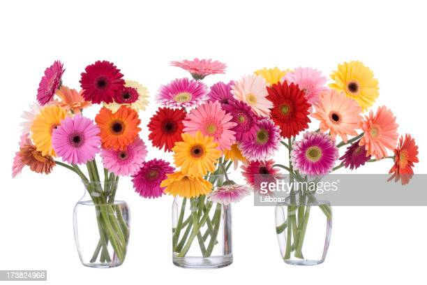 daisy bouquet - gerbera daisy stock pictures, royalty-free photos & images