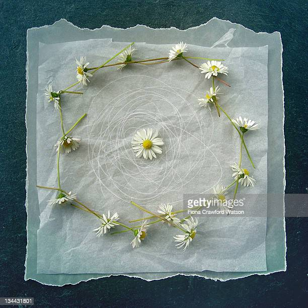 Daisy chain on paper and slate