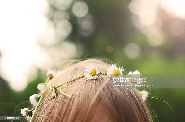 daisy crown - coroa enfeite para cabeça - fotografias e filmes do acervo