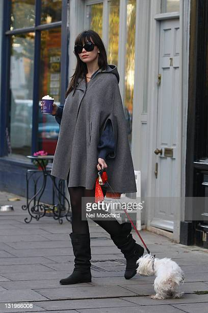 Daisy Lowe is pictured in Primrose Hill on November 9 2011 in London England