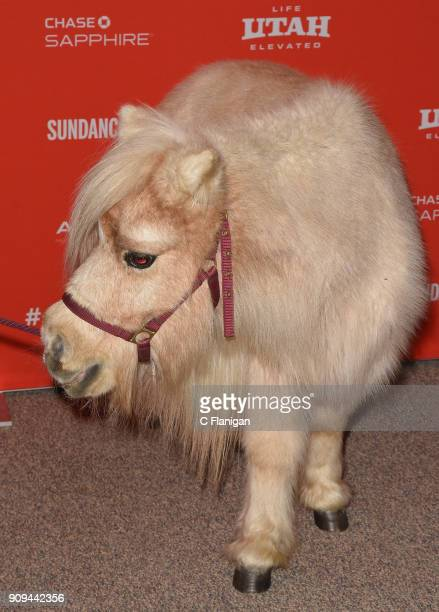 Daisy the horse attends the 'Damsel' Premiere during the 2018 Sundance Film Festival at Eccles Center Theatre on January 23 2018 in Park City Utah