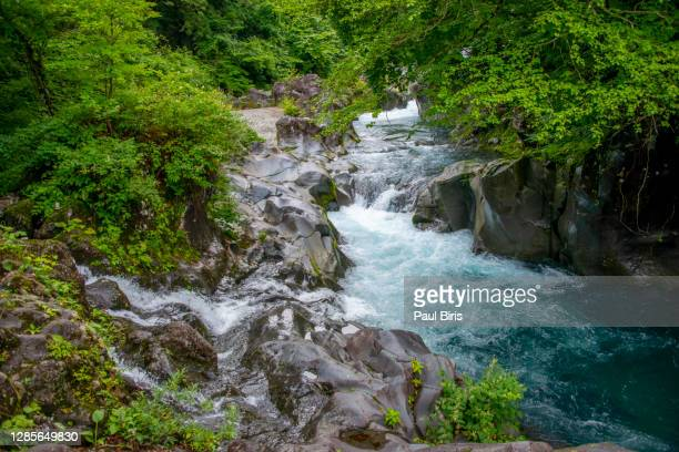 daiya river flowing water closeup with rocks and stones at kanmangafuchi abyss of nikko, tochigi prefecture in japan - nikko city stock pictures, royalty-free photos & images