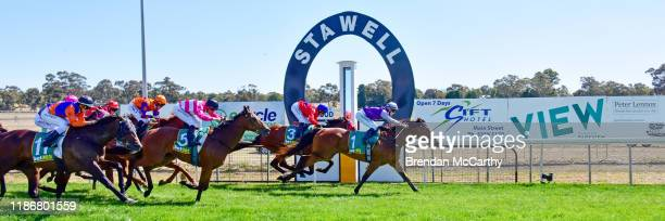 Daktari ridden by Laura Lafferty wins the Ecycle Solutions 0-58 Handicap at Stawell Racecourse on December 07, 2019 in Stawell, Australia.