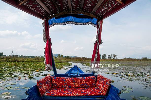 dal lake framed by a kashmiri shakira boat - kashmir freedom movement stock pictures, royalty-free photos & images