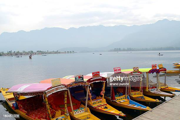 Dal Lake is a lake in Srinagar, the summer capital of Jammu and Kashmir. The urban lake, which is the second largest in the state, is integral to...
