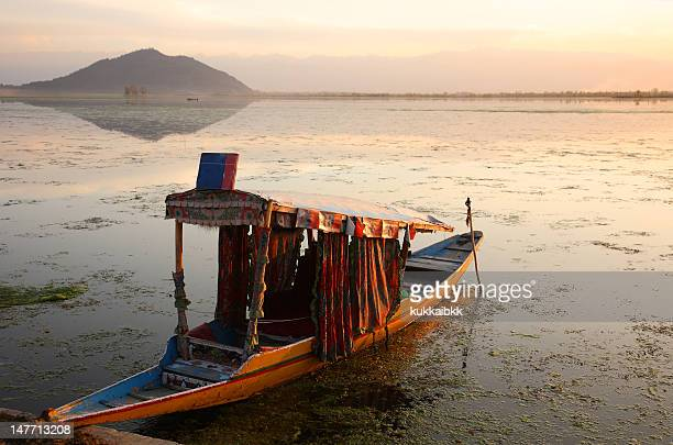 dal lake - kashmir valley stock photos and pictures